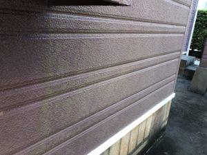 苔の生えた既存外壁材