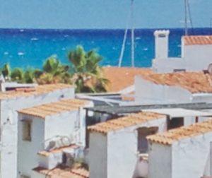 海外の屋根