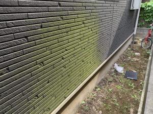 コケ生えた外壁