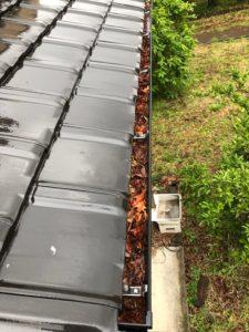 雨樋 枯れ葉