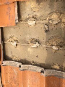雨漏り現場調査