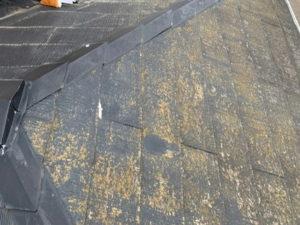 屋根の現調