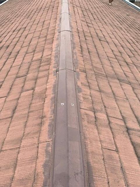 現地調査 屋根